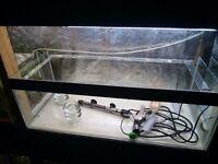 Bare fish tank 30 x 10 x 10