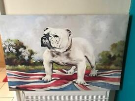 Bulldog canvas