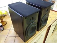 Tannoy Mercury M1 Speakers