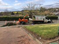 Birmingham Tree Care