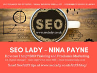 Freelance SEO Services & Training Days for Small Businesses SME Google Ranking since 2009