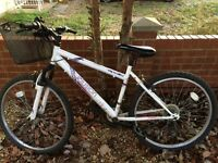 Bike with Basket in working Condition- collection Trumpington