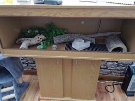 Reptile Vivarium good condition all accessories included. Including heat mat, uv light, heat lamp