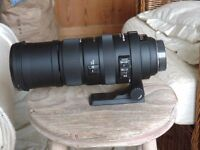Sigma DG 150mm to 500mm f 5.0 6.3 super telephoto zoom lens. APO HSM.