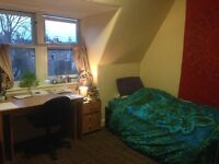 Bright single room in Postgraduate halls