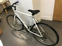 Ridgeback bike for sale