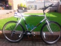 RALEIGH DISCOVERY, CLASSIC LIMITED EDITION ATB MENS BIKE, 21 GEARS