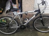 Ten pound each two bikes and two 19inch tv one with stand one with wall mounting text