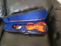 Adults violin