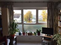Bright and spacious double room available immediately