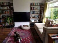 Single room in LS17 £350 all bills inc