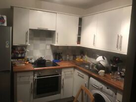 Spacious 1 double bedroom flat - Streatham Hill