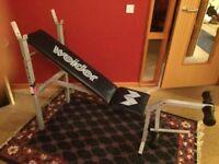WEIDER 120 SERIES FLAT & INCLINE WEIGHT BENCH W/ LEG CURL