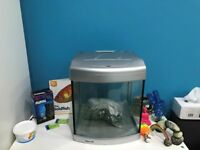 Fish Tank Setup - Ideal Starter Setup
