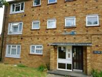 Large Top floor 1 bedroom flat