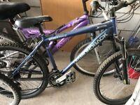 mens Diamondback DBX RACE bike