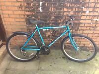 Raleigh bike ( good working condition, delivery)