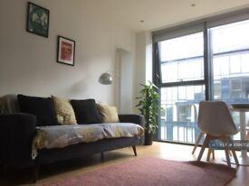 2 bedroom flat in Simpson Loan, Edinburgh, EH3 (2 bed) (#1094702)
