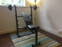 Weights, bench, barbell, dumbbells, pull up bar, preacher pad, leg extension set