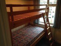 Pine Bunk Beds - urgent sale