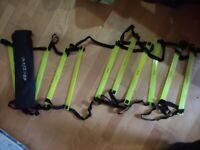 Exercise agility / speed ladder