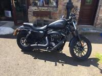 2014 883 iron Harley Davidson