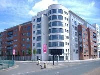 The Reach, Liverpool L3 - two bed fully furnished flat with parking available