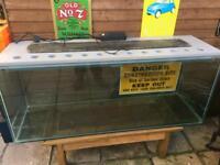 Large fish tank/ vivarium