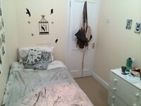 SINGLE ROOM IN PALMERS GREEN