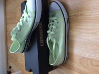 Dainty Converse - BRAND NEW - NEVER WORN