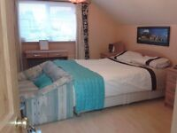 Large double room with king size bed with own shower and kitchen
