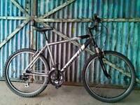 Men's Saracen Rufftrax 2 Mountain bike