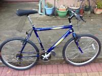 Condor freespirit mountain bike