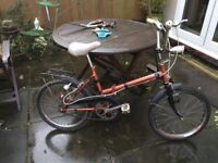 LADIES CITY FOLD UP BIKE RIDES VERY WELL COMES WITH CARRIER ON BACK (EXCELLENT FOR STUDENT)