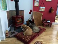 Just-Like-Home Residential Dog Boarding, Daycare & Dog walking