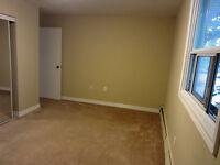 Tillsonburg 1 Bedroom Apartment for Rent: Utilities in, parking