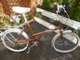 RALEIGH SOLITAIRE BICYCLE SHOPPER STYLE