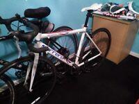 virtuoso carrera road bike