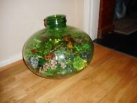 large green glass carboy with flowers