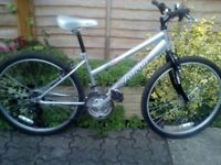 Nearly brand new FALCON STORM mountain bike only £65