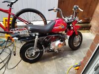 Used Monkey-bike for Sale | Motorbikes & Scooters | Gumtree