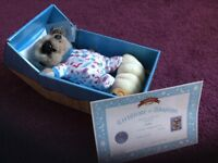 Brand new baby Oleg toy