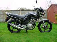YAMAHA YBR 125 (LOW MILEAGE)