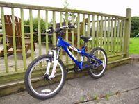 "Boys Carrera Blast mountain bike, 20"" wheels, good condition"