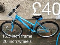 Ladies or gents Mountain Bikes £30 - £75 mountain bike cycle commuter student mtb full working order
