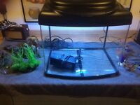 Large glass fish tank for sale with accessories