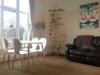 Short term rental Spacious One Bed Flat