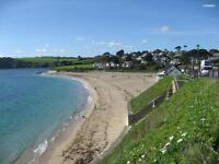 Hidden Cornish Gem in Central Falmouth, 1 Bed Self Catering Cottage wk. beg. 24th July onwards