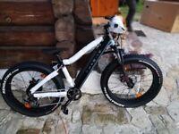 ELEKTRIC BICYCLE - FAT BIKE