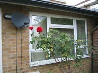 Two bed rooms( one double, one single) bungalow to let